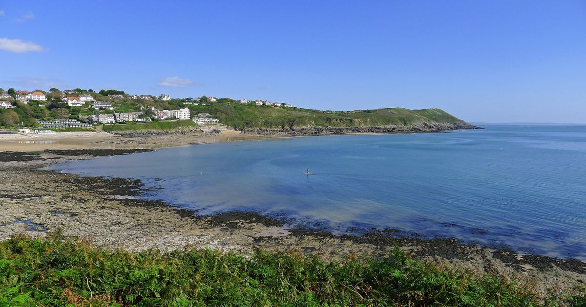 The water at Langland and Caswell Bay has been declared polluted and unsafe