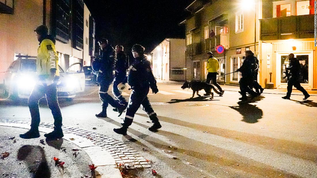 Kongsberg attack: Several killed in suspected bow and arrow attack in Norway
